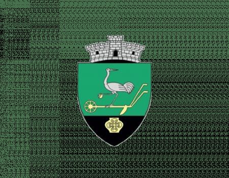 Primaria Darova